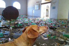 Sabe a chance do Estado pagar a conta do lixo que vem pelo Tietê? Esquece!