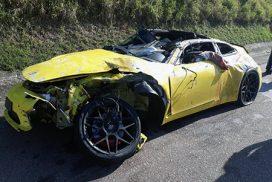 SP-75: gado na pista causa acidente com 1 morte em Indaiatuba e rodovia tem outra morte em Campinas