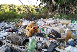 Read more about the article Nada de novo a se comemorar em Salto no Dia Mundial do Meio Ambiente