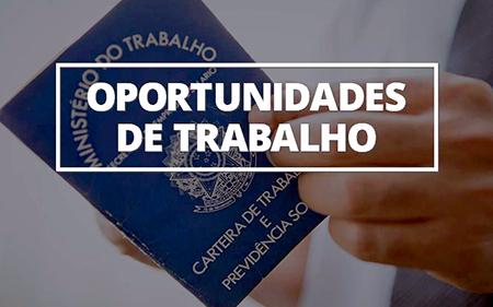 Read more about the article Está desempregado? PAT de Salto tem vagas em 13 áreas diferente nesta 2ª feira, dia 6