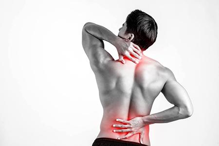 Read more about the article Ortopedista indica sete exercícios para fazer em casa e fortalecer a coluna