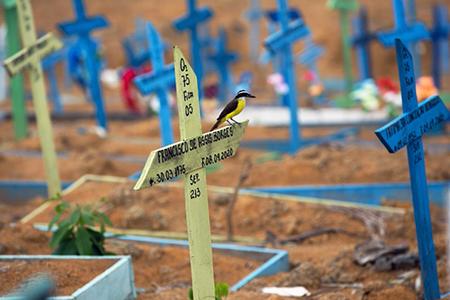 Salto registra mais 2 óbitos e 94 famílias já perderam seus entes para a Covid-19