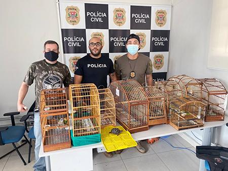 Polícia Civil e ONG resgatam pássaros em cativeiro em Salto e Porto Feliz