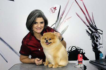 Read more about the article Quer se destacar no mercado pet? Aprenda a fazer tosas diferenciadas