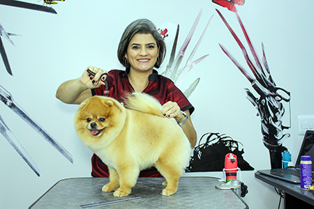 Read more about the article Você já pensou na capacitação de quem cuida do seu pet?