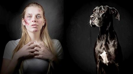 Read more about the article Subseção da OAB cria comissão de Defesa dos Direitos dos Animais