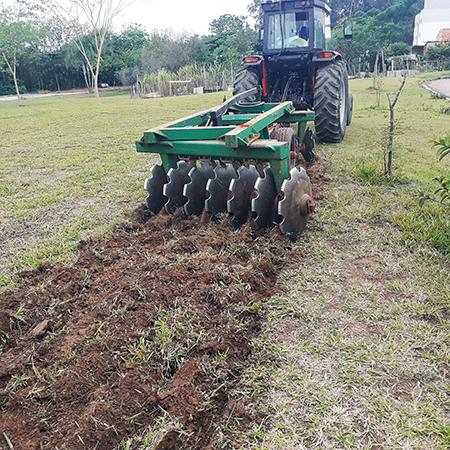 Read more about the article Plantação de Girassol é feita ao lado do Ecoponto do São Pedro e São Paulo: brilho, cor e alegria em breve